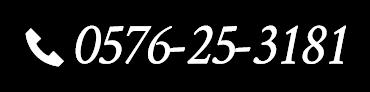 0576-25-3181